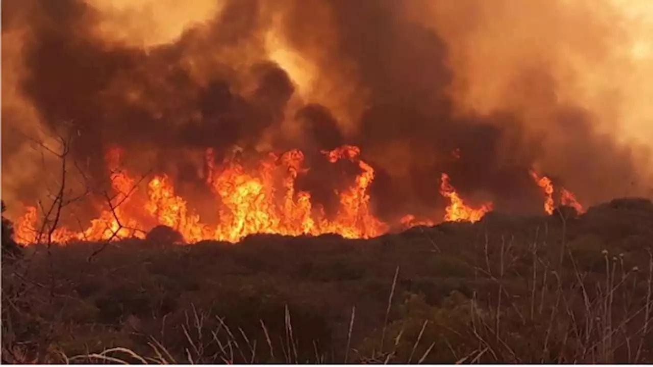 Giorgio Agamben: Cuando la casa se quema